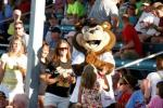 TC the Bear made another appearance for Twins night in 2011!